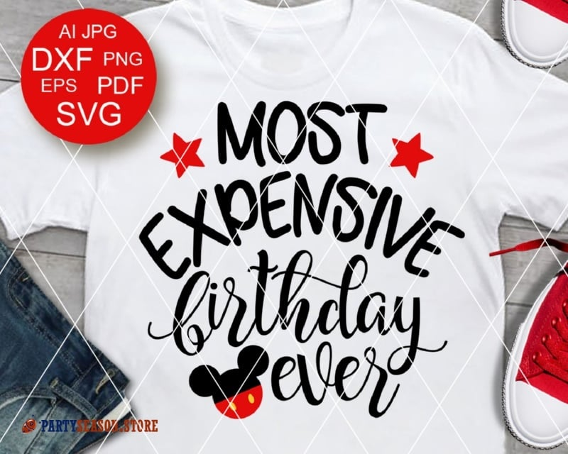 partyseason store most expensive birthday ever Mickey