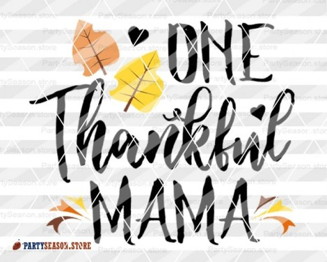 ONE thankful mama party season store 2