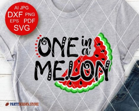 one in a melon Party season store 1