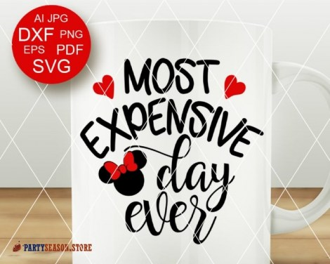 PartySeason Store expensive day Minnie 3