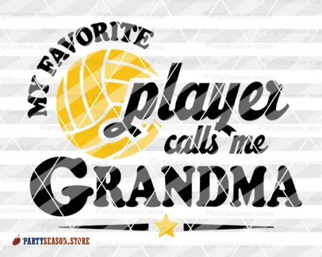 My Favorite Volleyball Player calls me Grandma party season 1