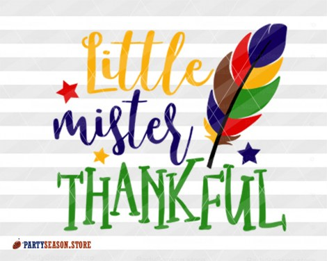 Little mister thankful Party season store 1