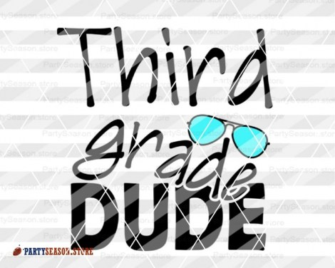 third grade DUDE Party Season store 3