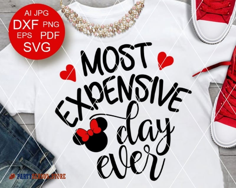 PartySeason Store expensive day Minnie